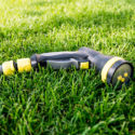 10 Common Lawn and Garden Woes of Summer