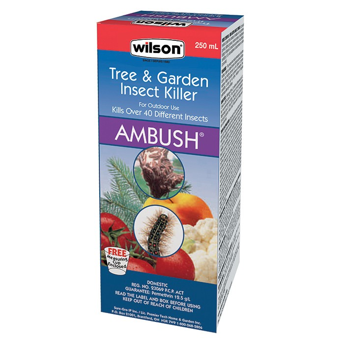 7300750-Wilson-Ambush-250ml-Conc-EN-copy
