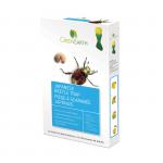 Green Earth Piège à scarabée japonais