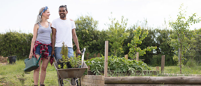 5 proven ways gardening is good for you