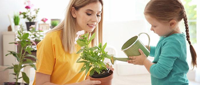 Indoor garden crafts kids