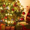 Christmas tree inside home