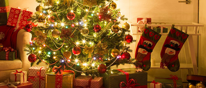 8 most popular types of christmas tree in canada premier - Pictures of homes decorated for christmas on the inside ...